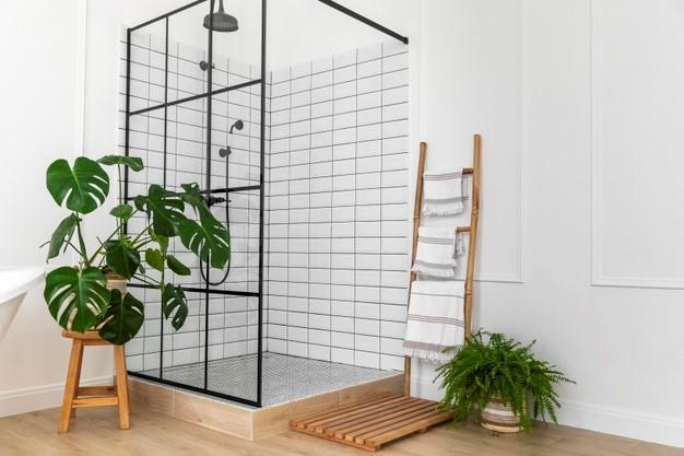 Plants & Ladders!