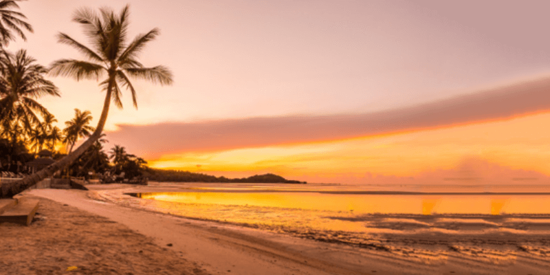 Goa: The Official Party Capital Of India – Travel Guide
